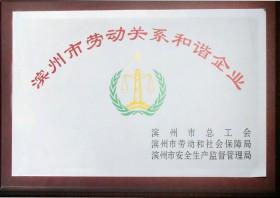 滨州市劳动关系和谐企业